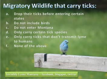 migratory spp quiz